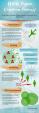 My Infographic1