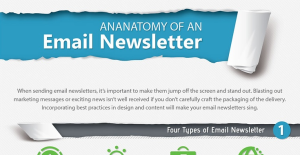 3.	Anatomy of an Email Newsletter